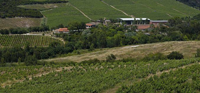 Sogrape compra Quinta da Romeira