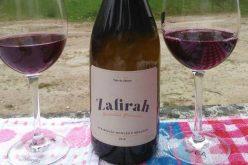 Zafirah 2016