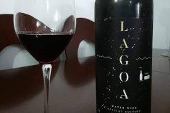 Algarve no Copo #8 – Lagoa Water Wine 2014
