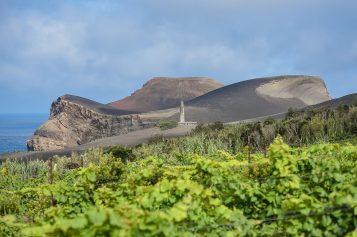 Vinalda distribui vinhos da Adega do Vulcão