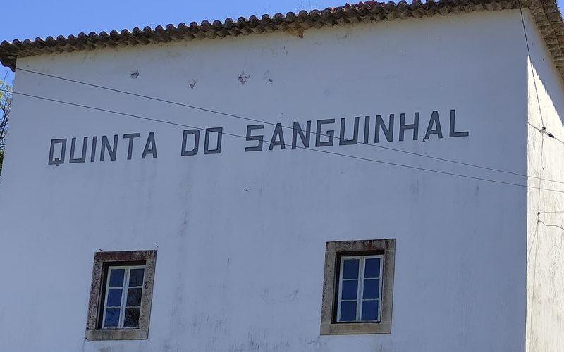Companhia Agrícola do Sanguinhal